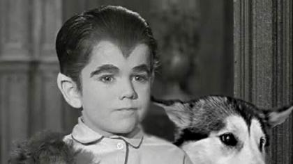 Eddie-Munster-and-His-Pet-Dog-Casket-103186